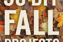 Fall favs / by Laura Wieczorek