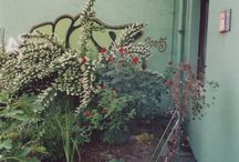 New home interior design & garden / by Alma Luna
