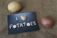 potatoes / by Kathleen O'Hearn- Jerry