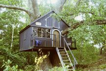 Tree Houses / by Steven Empey