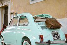 Beetles & Cars / by Kisha Lockner
