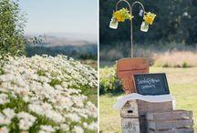 Wedding venues / different wedding venue options / by Emma Kelp-Stebbins