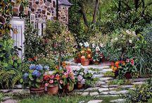 My Garden / by Alyanna Johnson