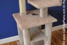 Cat tree plans for Jasper / by Amy Jacobsen