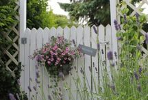 Gates & Fences / by JaynieJellyBelly