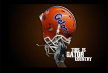 It's great to be a gator / by Leighnara Barbari