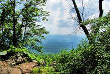 Alabama Getaway / by Amy Vandiver