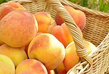 JUST PEACHY, WITH APRICOTS  & NECTERINES TOO! / by Terry Mayfield