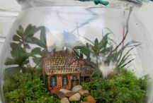Plants! / by Patricia Stuart