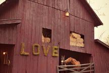 Barns / by Belinda Self