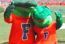 I bleed Orange & Blue - Go Gators! / by Michelle Asbell