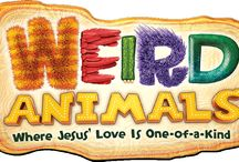 Weird Animals VBS / Ideas for Weird Animals VBS / by Amy Stahl