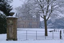 Downton Abbey Obsession / by Dawn Gilley