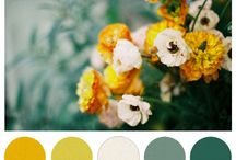 Colors / by Amber Crouse