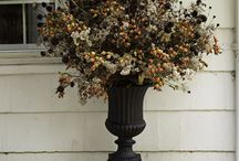 Porch Decorations / by Diane McParlane