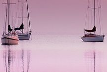 Perfectly Pink / by Ellie Cawley