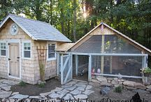 Chicken Coops / by Kathy, The Chicken Chick®