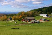 Vermont / by thismamathing