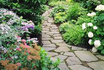 Garden/Landscape / by Audrey Buglione