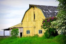 Barns / by Kathleen G