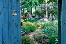 Gardens / by Kathy Shay-Shapiro