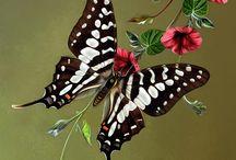 Tattoos - Butterflies / by Lisa Roley Modglin