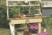 Gardening Ideas / by Chris aka  CAT