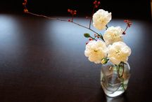 Floral Flowers / by Matt Allison