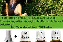 Natural remedies for ur dog / by satiah Swedenskey