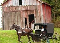 barns / by 356 porsche
