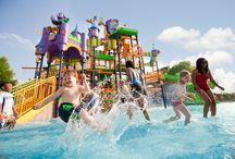 amusement parks/rides / by Cindy Hertz