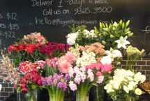 Flower Shoppe / by Christie Repasy Designs