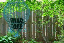Backyard garden / by Jennifer Hansen