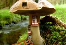 mushrooms! / by Sara Nagy