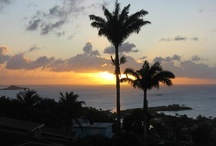 Guest Photos / by Trade Winds Hotel Antigua