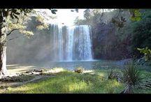 New Zealand / by Richard Biddle