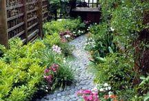 Backyard Design Ideas / by Chavi Singer