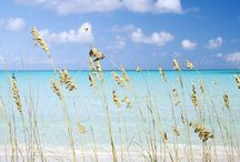 Vacation Spots & Ideas / by Lacey Acuff