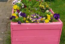 Pallet Planters / Fun selection of planters made from pallets / by Plant Care Today