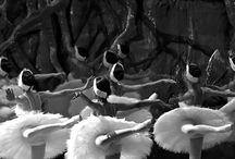 Pretty Ballerinas / by Sumine Marais