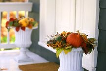 Thanksgiving and Fall Harvest / by Cathy Roach