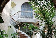 Hacienda / by Tonya Bundy