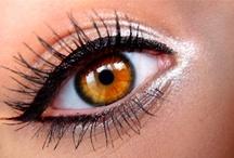 Makeup / by Paula Vieira