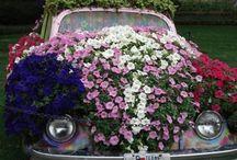 gardening! / by Amber Herring