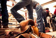 Wahoo!!! Cowboys / by Melissa Soyring