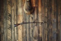 Hunting & fishing / by Jamie Surber