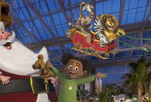 Gaylord Palms Resort / by On the Go in MCO