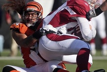 My Bengals  / by Kimberly Byers