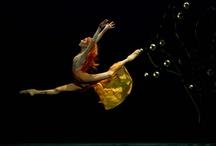 Fairy Tale Ballets / by Gypsy Thornton