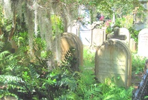 Cemetaries/Death/Graveyards / by Sharon Alvarez